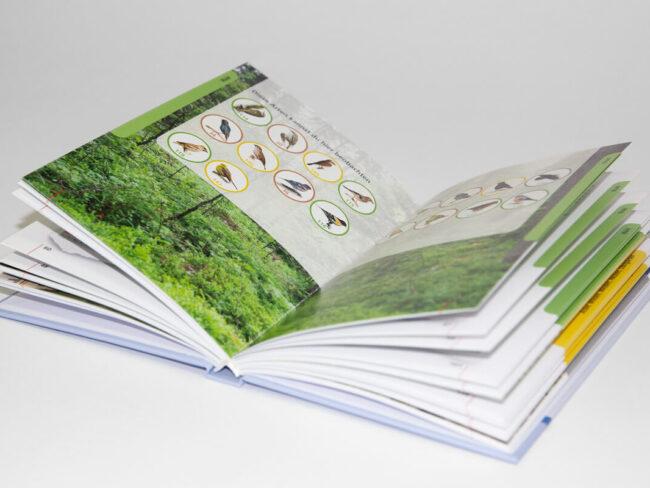 VOSE-BU-Kinderbuch_03