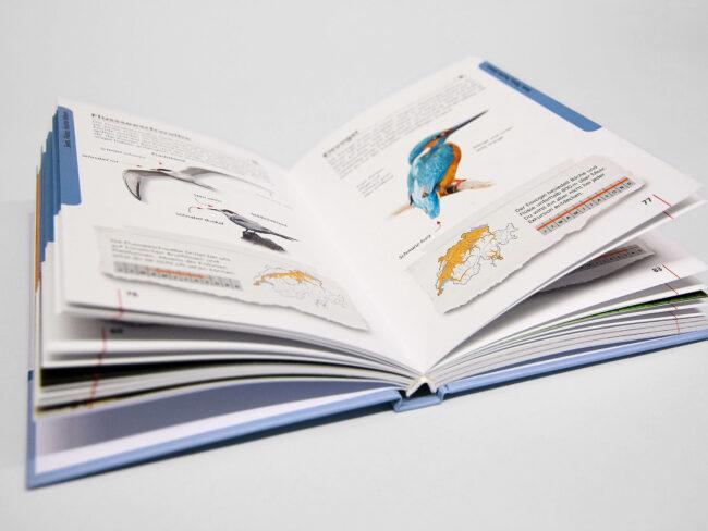 VOSE-BU-Kinderbuch_06